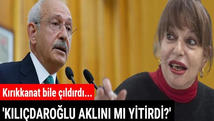 Kılıçdaroğlu'nun vergi çıkışına Mine Kırıkkanat bile tepki gösterdi: Aklını mı yitirdi?