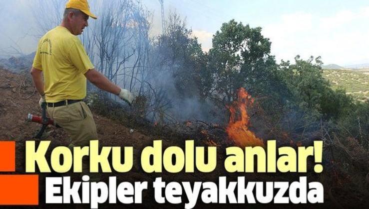 Son dakika: Manisa'da çıkan orman yangını kontrol altına alındı