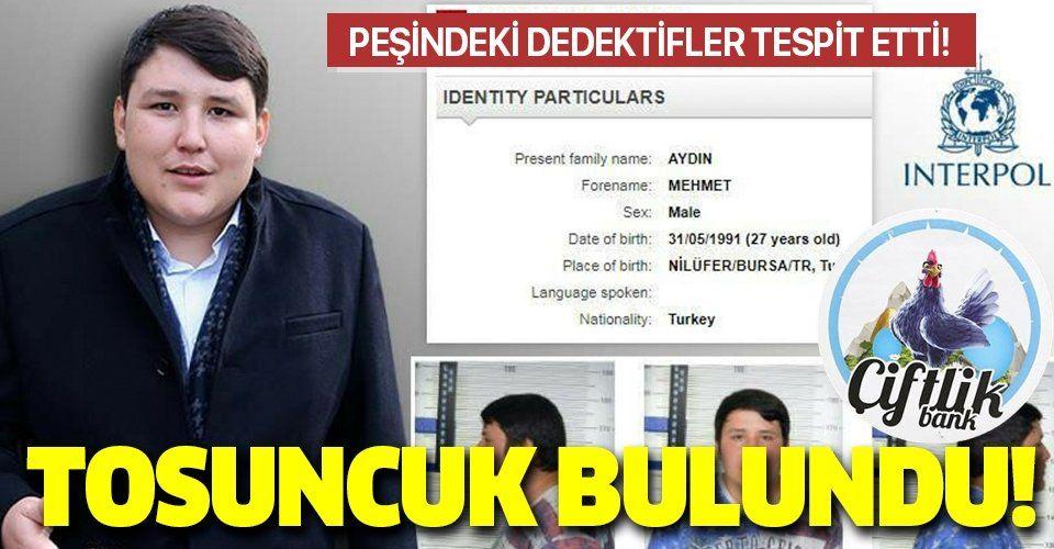 Tosuncuk lakaplı Mehmet Aydın'ın adresi tespit edilip Interpol'e bildirildi
