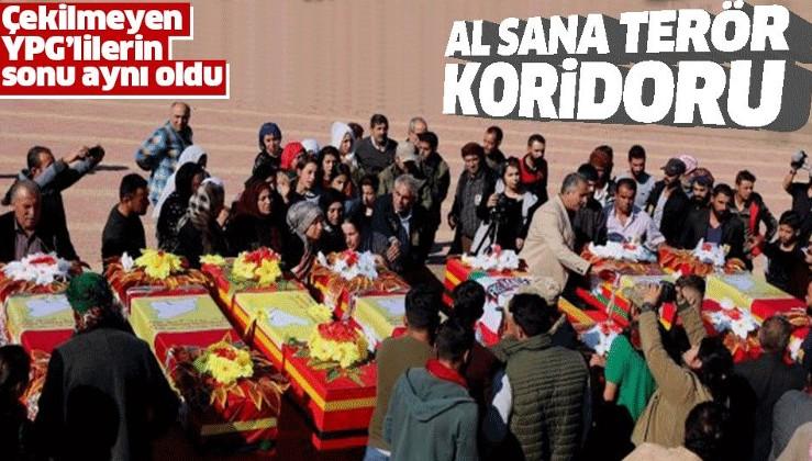 Suriye'de YPG'li terörist Zau Seng öldürüldü.