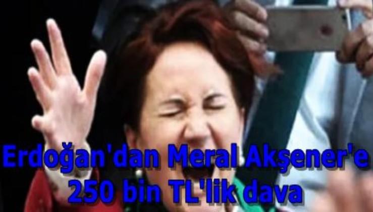 Erdoğan'dan Meral Akşener'e 250 bin TL'lik dava