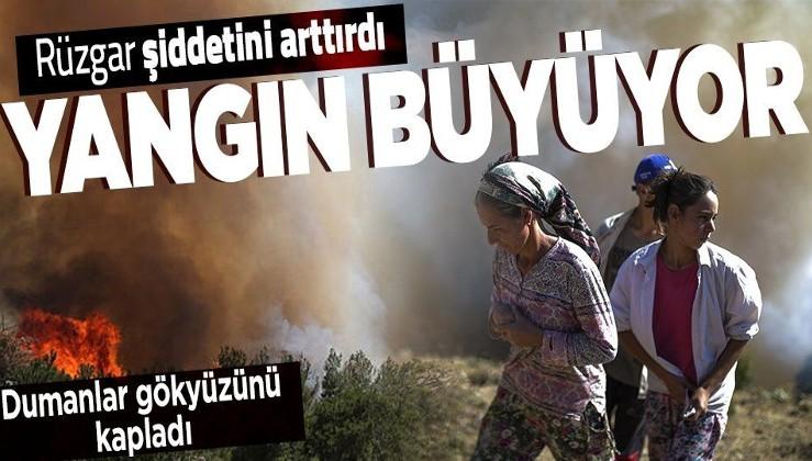 Köyceğiz yangını rüzgarın da etkisiyle büyüdü! Muğla'da alevlere karşı canla başla mücadele
