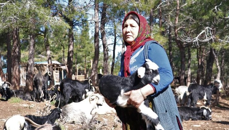 Yörükler 'En değerli varlıklarını' depremzedelere bağışladılar