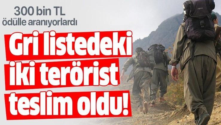 'Gri listedeki' 2 terörist teslim oldu!.