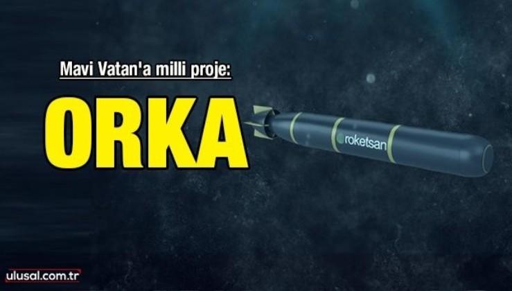 Mavi Vatan'a milli proje: ORKA