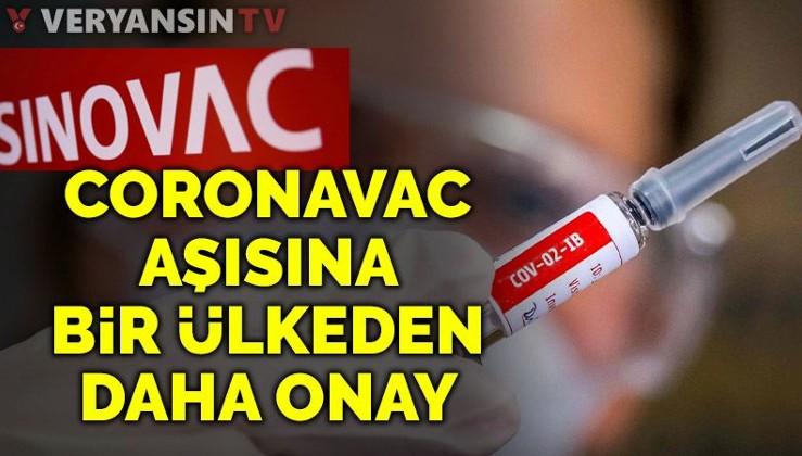 CoronaVac aşısına bir ülke daha onay verdi