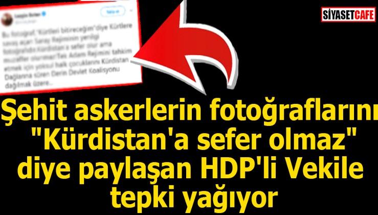 ALÇAKLAR! HDP'li vekil şehit askerlerin fotoğraflarını 'Kürdistan'a sefer olmaz' diye paylaştı!