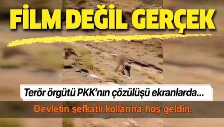 """Terör örgütü PKK çözülüyor: """"Devletin şefkatli kollarına hoş geldin"""""""