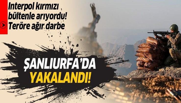 SON DAKİKA: Kırmızı bültenle aranan PKK'lı terörist Şanlıurfa'da yakalandı