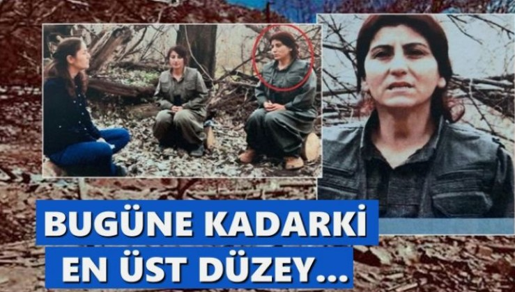 PKK'ya kritik darbe: Bugüne kadar vurulan en üst düzey..