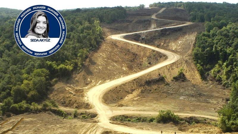 'Ormanlarımız yasalarla talan edildi'