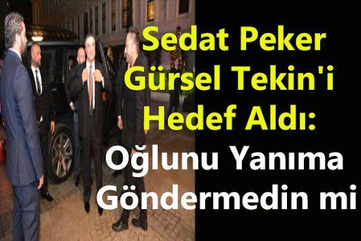 Sedat Peker'den CHP'li Gürsel Tekin'e ilişkin önemli iddialar: Evladınız Ulaş kardeşimi...