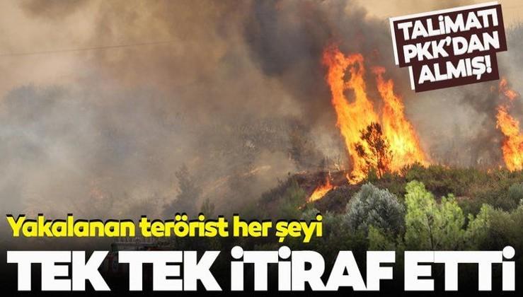 AFGANLILAR GELİYOR KORKUSUNUN YAYILMASININ ARDINDAN, PKK'NIN ORMANLARI YAKMASI !