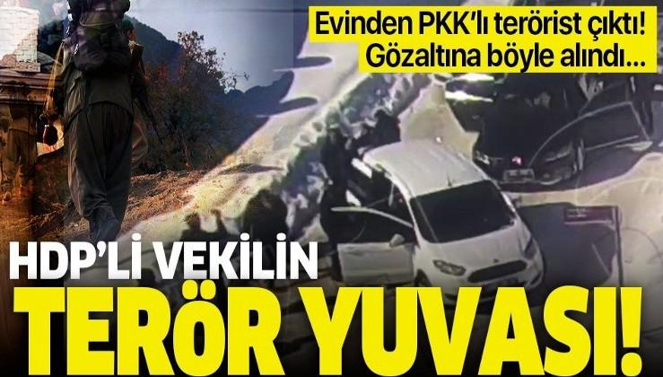 HDP Van Milletvekili Murat Sarısaç'ın terör yuvası! Evinden PKK'lı terörist çıktı.