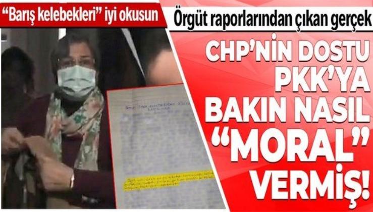 """HDP'li Leyla Güven'in PKK desteği terör örgütünden ele geçen raporlarla doğrulandı! Örgüte bakın nasıl """"moral"""" vermiş!"""