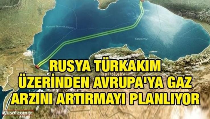 Rusya, TürkAkım üzerinden Avrupa'ya gaz arzını artırmayı planlıyor