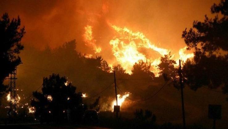 İzmir Menderes'te yangın çıkmasına neden olan şahıs tutuklandı!
