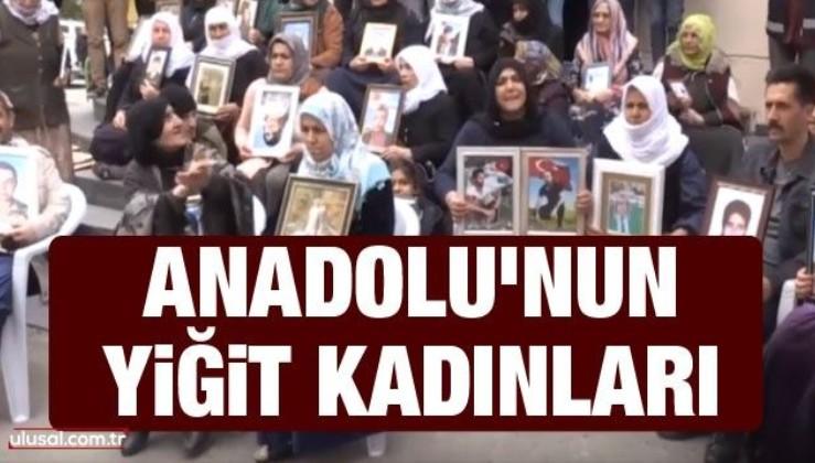 Anadolu'nun yiğit kadınları
