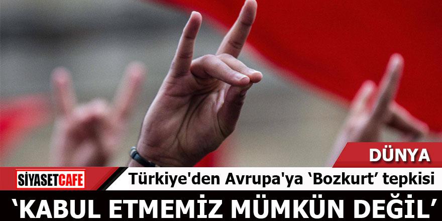 Bozkurt işareti yasağına Türkiye cevabı