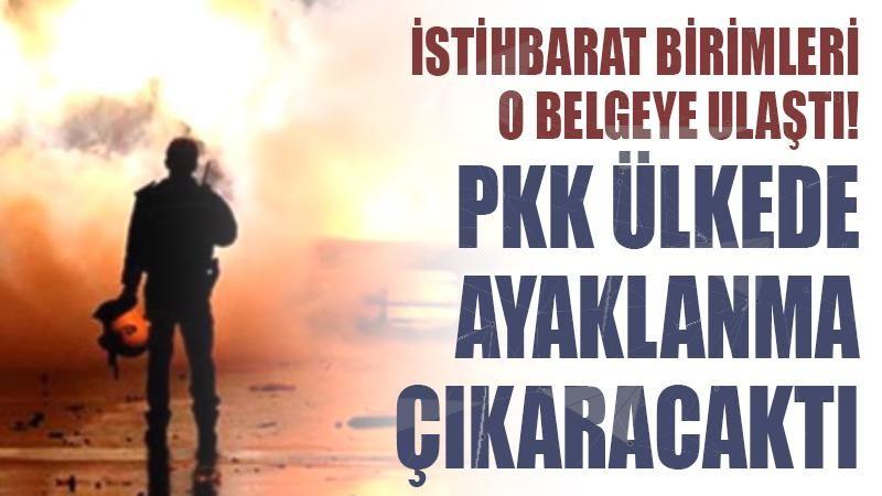 PKK ayaklanma çıkaracaktı!