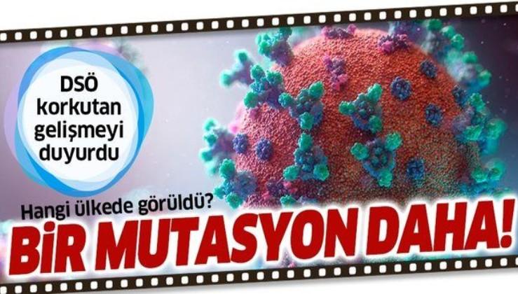 DSÖ'den flaş açıklama: Japonya'da koronavirüsün mutasyona uğramış başka türü tespit edildi