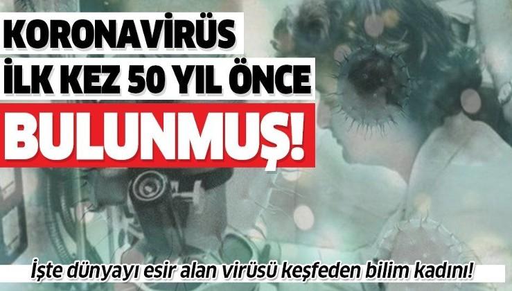 Son dakika: Koronavirüs ilk olarak 1964'te bulunmuş!