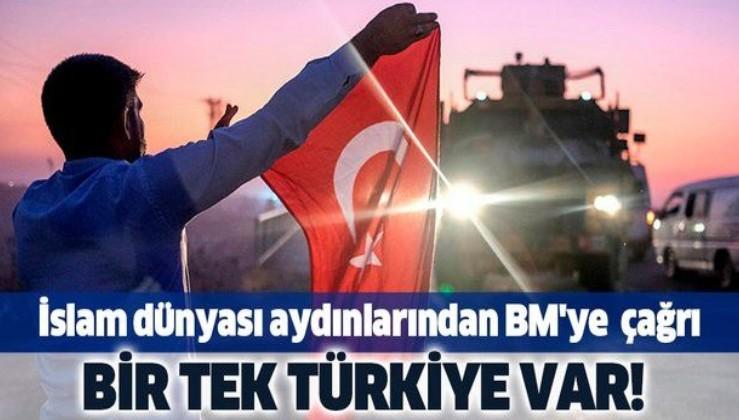 İslam dünyası aydınlarından BM'ye çağrı: Bir tek Türkiye var.