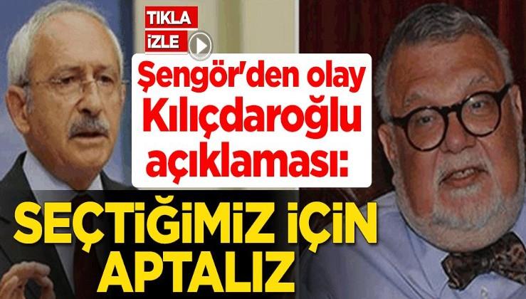 Celal Şengör'den olay Kemal Kılıçdaroğlu açıklaması: Seçtiğimiz için aptalız
