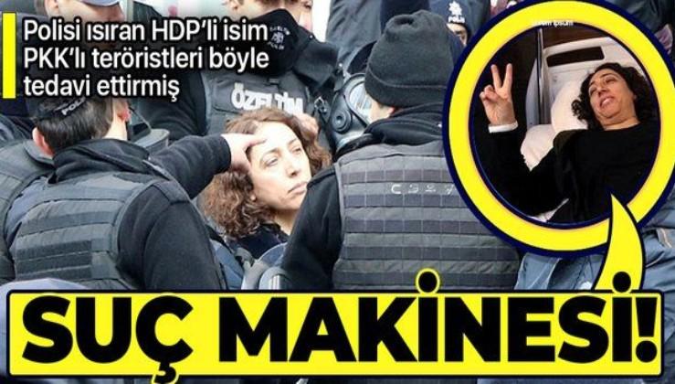 HDP'li Saliha Aydeniz'in iddianamesinde ortaya çıktı! PKK'lı teröristleri sivil gibi gösterip tedavi etmiş!