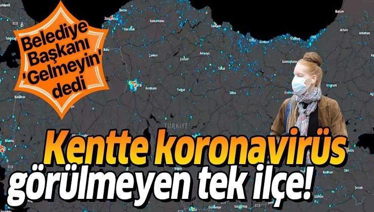 İşte Türkiye'de koronavirüsün görülmediği ilçe!