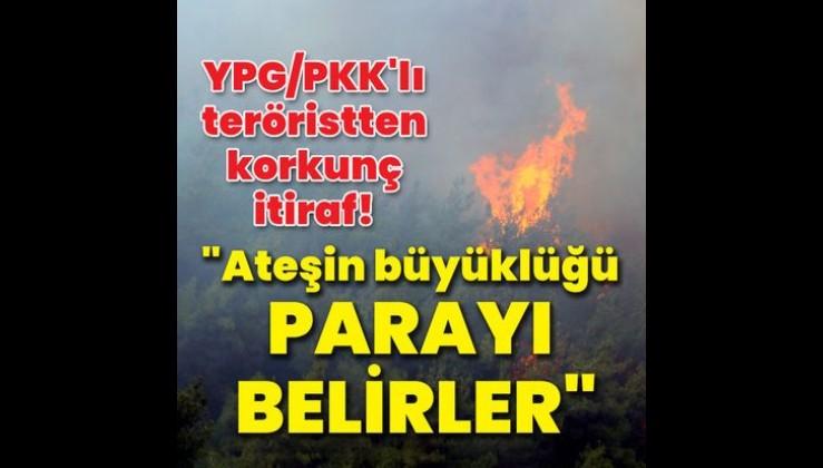 İfadesi ortaya çıktı! YPG/PKK'lı teröristten orman yangınlarıyla ilgili itiraf