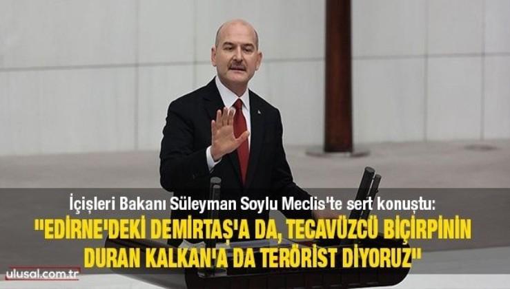 ''Edirne'deki Demirtaş'a da, tecavüzcü Biçirpinin duran Kalkan'a da terörist diyoruz''
