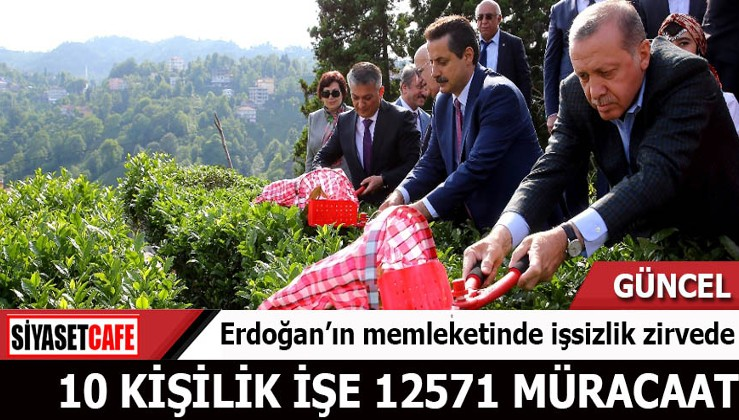 Erdoğan'ın memleketinde işsizlik zirvede