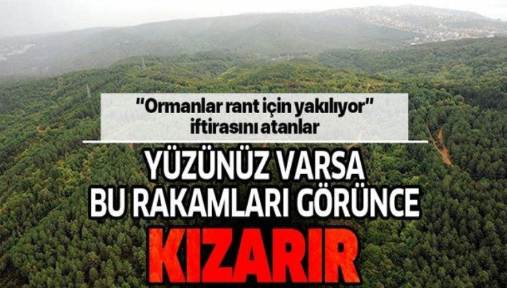 Türkiye'nin orman varlığı 2023'e kadar 660 bin hektar artırılacak