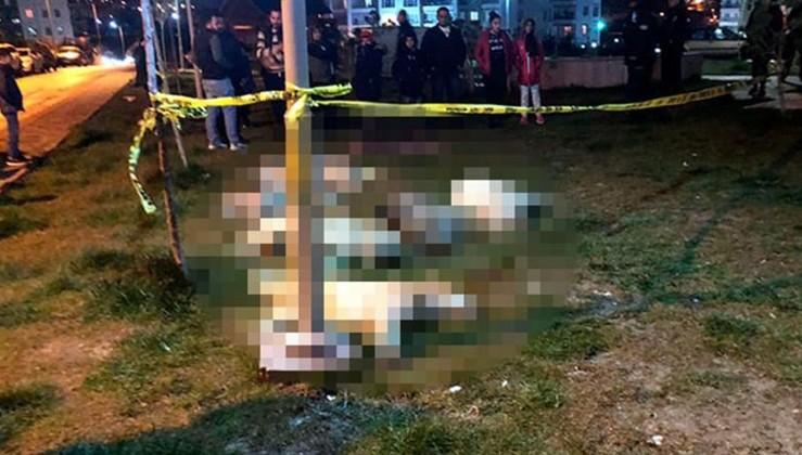 Ankara'daki toplu katliama tepki: 10 milyon sokak hayvanı ölüm korkusuyla yaşıyor!