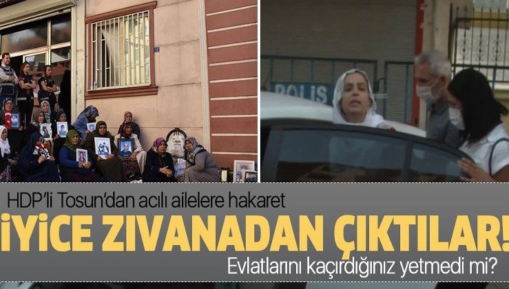 HDP'li Remziye Tosun'dan Diyarbakır'da evlat nöbetindeki ailelere hakaret!