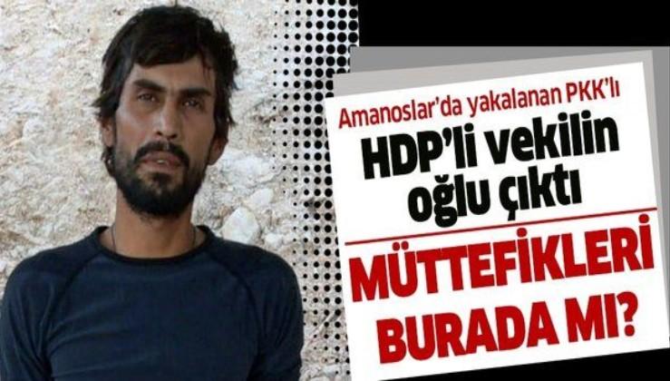 Firari eski HDP milletvekilinin terörist oğlu Amanoslar'da sağ olarak yakalandı