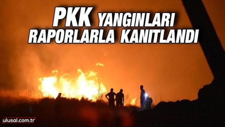 PKK yangınları raporlarla kanıtlandı