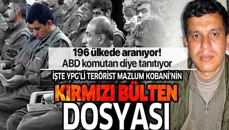 İşte YPG'li terörist Mazlum Kobani'nin 'kırmızı bülten' dosyası.