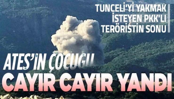 Tunceli'de ormanı ateşe veren PKK'lılara operasyon: 1 terörist öldürüldü