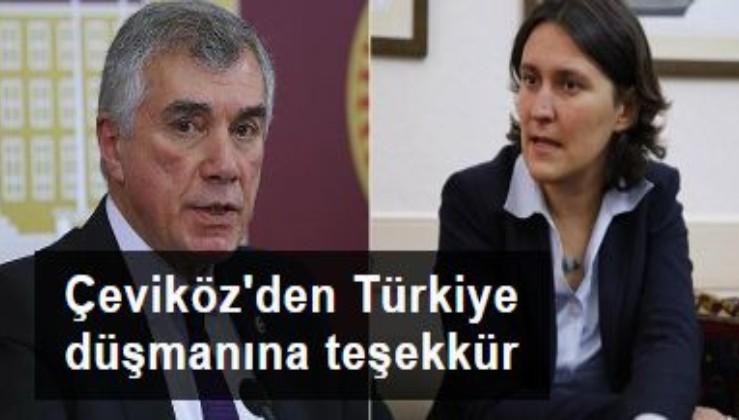 CHP'li Çeviköz'den Türkiye düşmanı Kati Piri'ye teşekkür